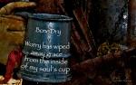Bone Dry by JoDee Luna