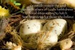 Gratitude Nest by JoDee Luna