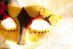 Jester_mask_yellow_black_red_front_view_1166