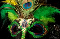 Peacock Plume Mask Created by Elya Filler and JoDee Luna