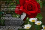 Roses and Daisies A Tribute to Mom by JoDee Luna