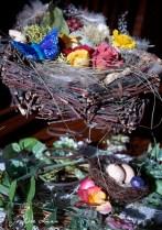 Spring_Nest_588