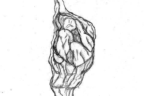 chrysalis Cropped 960 JoDee Luna